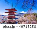 (山梨県)日本の美・桜と雪・新倉山浅間公園から望む富士山 49718258