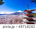 (山梨県)日本の美・桜と雪・新倉山浅間公園から望む富士山 49718282