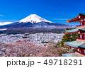(山梨県)日本の美・桜と雪・新倉山浅間公園から望む富士山 49718291