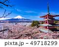 (山梨県)日本の美・桜と雪・新倉山浅間公園から望む富士山 49718299