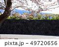 桜 花 春の写真 49720656