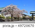 桜 青空 春の写真 49720670