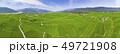 空撮 米 ご飯の写真 49721908