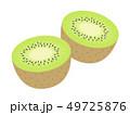 キウイ キウイフルーツ フルーツのイラスト 49725876