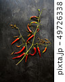 Red hot chili pepper bush on old wooden black background 49726338