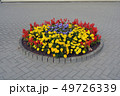 Circle flowerbed with flowers on street pavement 49726339