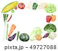 水彩 野菜 食材のイラスト 49727088