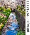 春の京都 哲学の道 49748345