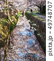 春の京都 哲学の道 49748707