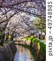 春の京都 哲学の道 49748985