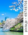 東京 千鳥ヶ淵の桜 49749708