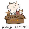 捨て猫、捨て犬、捨て蛸、捨てぬいぐるみ 49756906