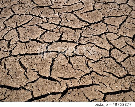 ひび割れた農地 早春の水田 b  49758877
