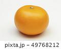 フルーツ 果物 果実の写真 49768212