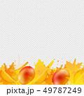 ジューシーな ベクトル しずくのイラスト 49787249