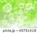 新緑(若葉) 49791418