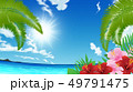 リゾート地 49791475