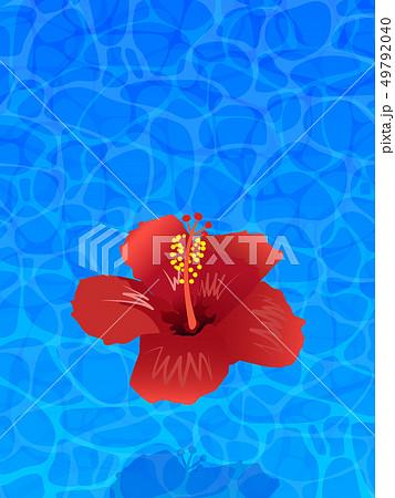 南国イメージ素材 49792040