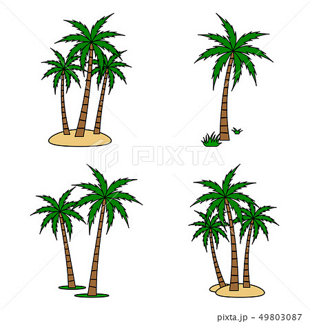 Palm tree Vector Set 49803087
