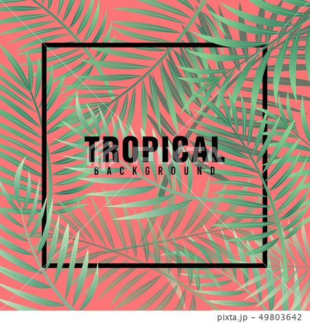 Tropical Background Vector 49803642