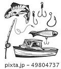 サカナ 魚 魚類のイラスト 49804737