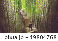 knight walking on garden bridge 49804768
