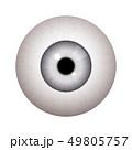目玉 リアル 本格のイラスト 49805757