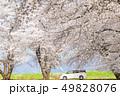 咲く 花 開花の写真 49828076
