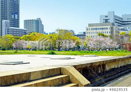 大阪 難波宮跡(なにわのみやあと) 49829535