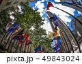 ロックフェラーセンターのイメージ(ニューヨーク) 49843024