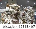シーサー 沖縄 琉球 南国 宮古島 レジャー アウトドア 工芸 文化 美術 アート クラフト 49863407