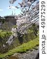 桜 15 49875299