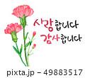 花 ありがとうございました 感謝のイラスト 49883517