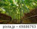 嵐山 バックグラウンド 背景の写真 49886763
