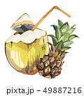 アナナス ココナッツ エキゾチックのイラスト 49887216