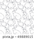 うさぎ ウサギ 兎のイラスト 49889015