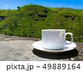 Sri Lanka tea hills. Tea cup and plantation. 49889164