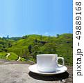 Sri Lanka tea hills. Tea cup and plantation. 49889168