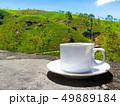Sri Lanka tea hills. Tea cup and plantation. 49889184