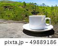 Sri Lanka tea hills. Tea cup and plantation. 49889186
