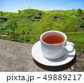 Sri Lanka tea hills. Tea cup and plantation. 49889217