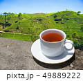 Sri Lanka tea hills. Tea cup and plantation. 49889222