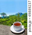 Sri Lanka tea hills. Tea cup and plantation. 49889237