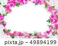 ピンクと白の薔薇フレーム 49894199