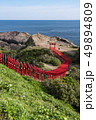 元乃隅神社 鳥居 風景の写真 49894809