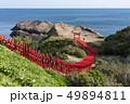 元乃隅神社 鳥居 風景の写真 49894811
