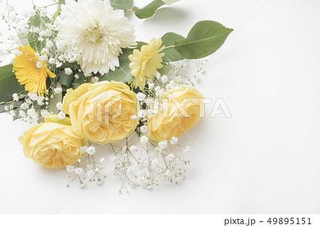 父の日の黄色い薔薇 49895151