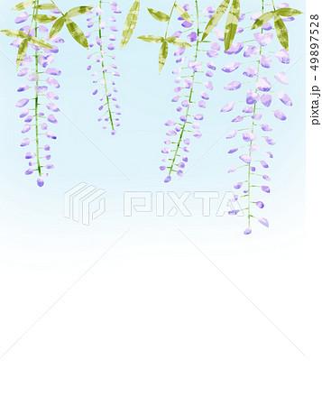 藤の花フレーム 49897528