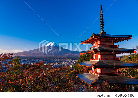 《山梨県》朝日を浴びる、新倉山浅間公園の桜紅葉・忠霊塔・新雪富士 49905486