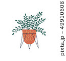 植物 葉 マンガのイラスト 49910608